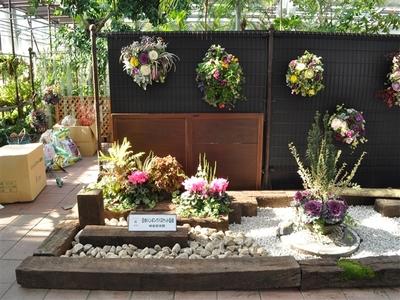 花フェスタ記念公園 ハンギングバスケット展