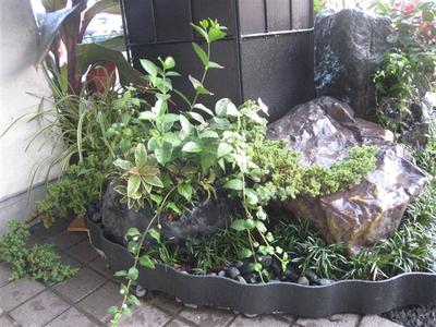 擬岩の寄せ植え