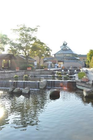 オアシスパークの水上花壇