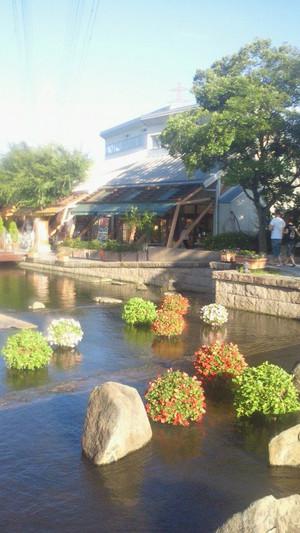 オアシスパーク様インパチェンス水上花壇の設置